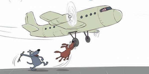 Что делать, если опаздываешь на самолёт