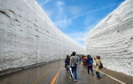 В Японии для туристов вновь открылся знаменитый снежный каньон