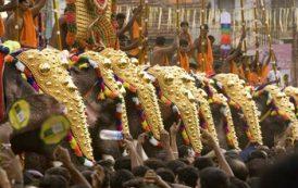 В Индии проведут Фестиваль слонов