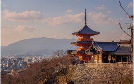 С начала года турпоток из РФ в Японию вырос на 20%