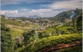 Туристов вновь предостерегают от поездок на Шри-Ланку