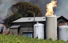 Во Франции при пожаре испарилось 250 000 литров коньяка