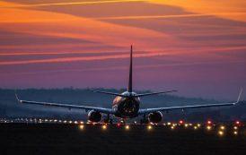 Совы или жаворонки: путешественники выбрали лучшее время для вылетов