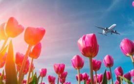 Исследование: вотпуск нагрядущие майские отправятся в1,5 раза больше россиян