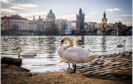 На майские праздники Прага стала самым популярным направлением у туристов из РФ